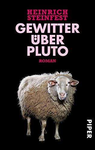 Heinrich Steinfest: Gewitter über Pluto