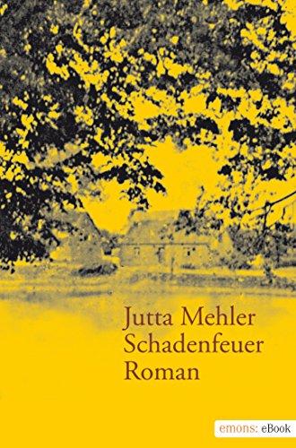 Schadenfeuer von Jutta Mehler
