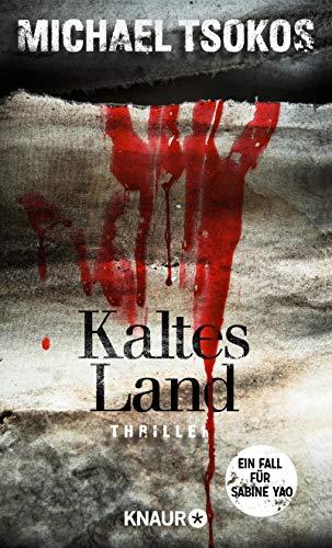 Michael Tsokos: Kaltes Land